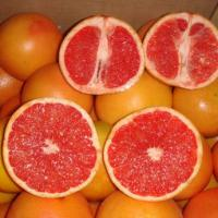 Large picture Grapefruits