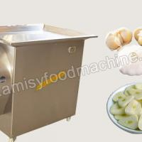 Garlic Slicing Machine